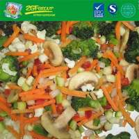HOT SALE IQF vegetable blend