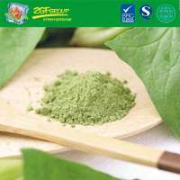 Instant Spinach Drink Powder