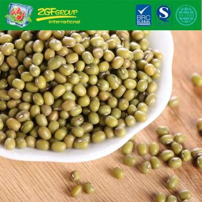 New Crop High Quality Dry Mung Beans