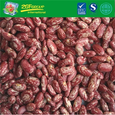 IQF Frozen Red Kidney Bean For Sale