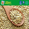 High Quality Dry Lentils