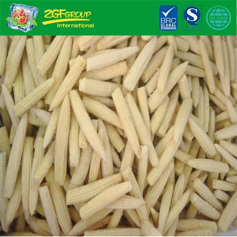 IQF Frozen New Crop Wholesale Baby Corn